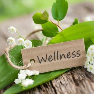 zen-bali-wellness